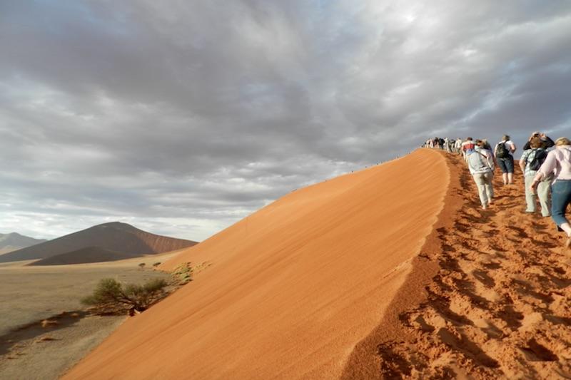 Dunes in the desert - Namibia
